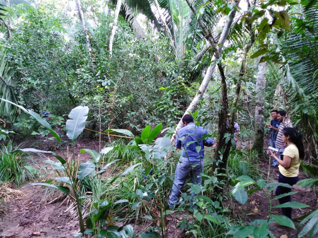 Dieses Bild hat ein leeres Alt-Attribut. Der Dateiname ist Evaluacion-de-la-vegetacion-de-1.24-Ha-para-la-regeneracion-de-bosque-1-1024x768.jpg